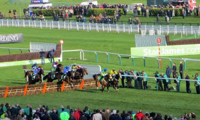 Horses running at the Cheltenham Festival at Cheltenham Racecourse