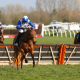 Annie Mc, trained by Jonjo O'Neill, winning at Newbury Racecourse in March 2019