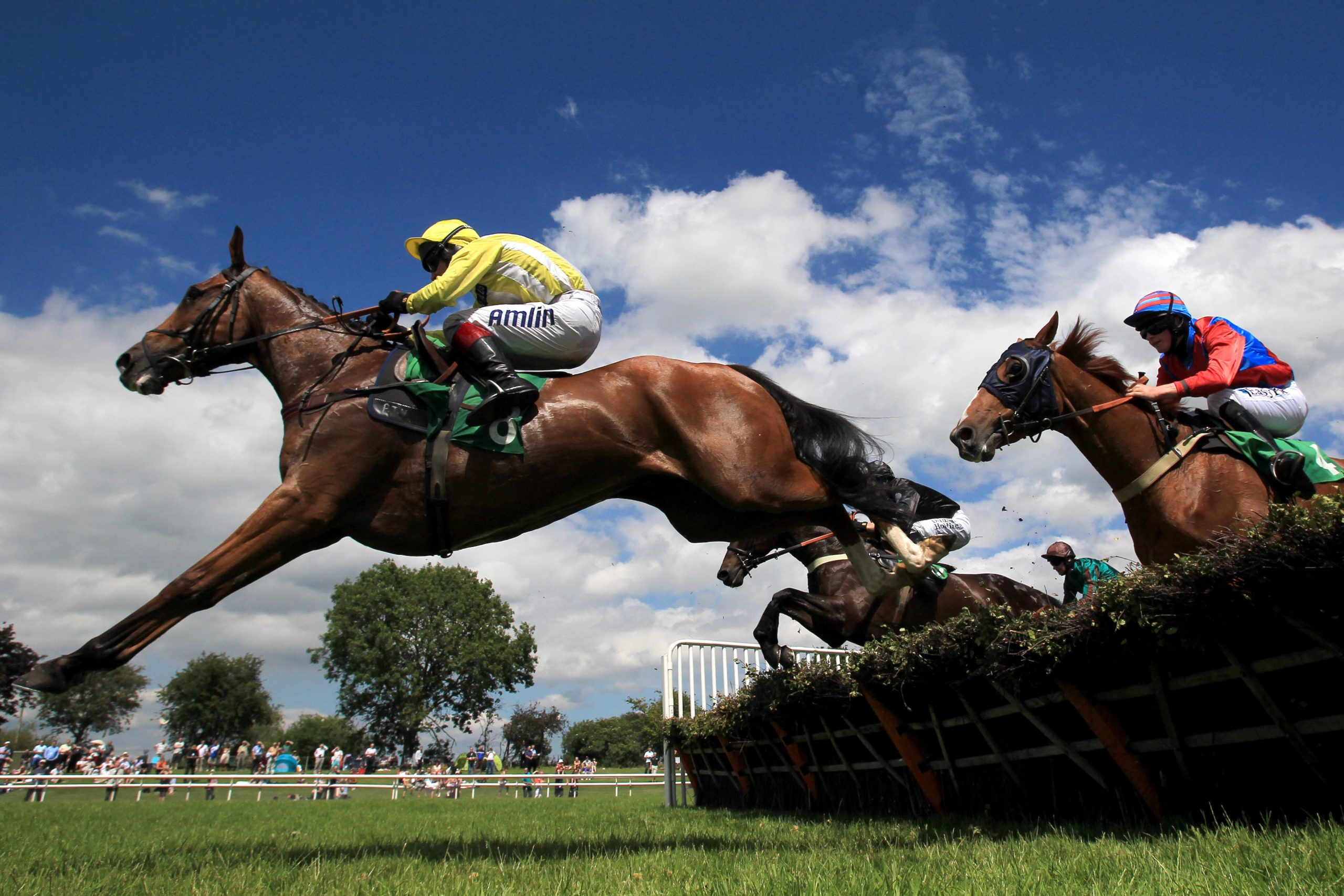 Race horses jump a hurdle at Uttoxeter Racecourse