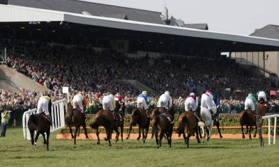 Irish runners race at the 2010 Punchestown Festival at Punchestown Racecourse