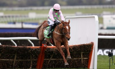 Race mare Annie Power and Ruby Walsh jump the last hurdle in the Champion Hurdle at the Cheltenham Festival in 2016 at Cheltenham Racecourse