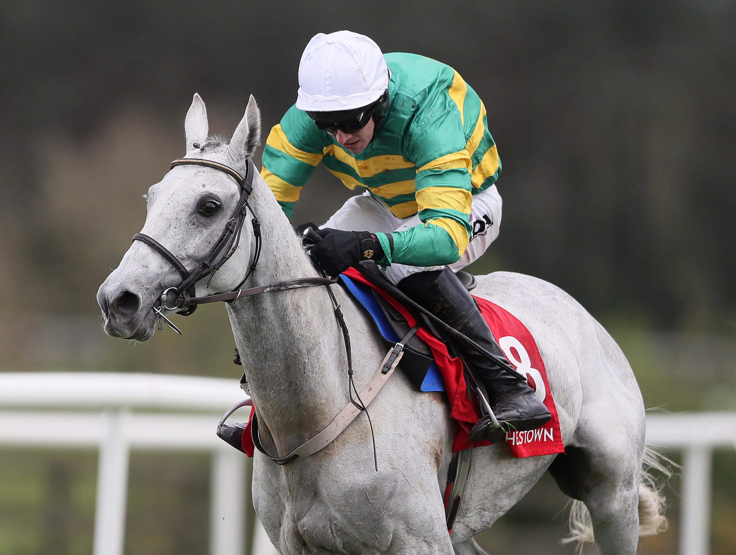 Elimay and Mark Walsh winning at the Punchestown Festival in May 2019 at Punchestown Racecourse in Ireland
