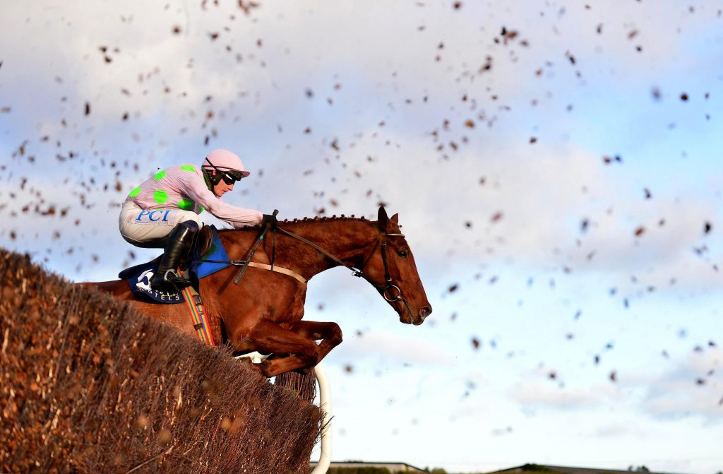 Monkfish ridden by Paul Townend clear a fence on their way to victory in the Neville Hotels Novice Chase during the Leopardstown Christmas Festival at Leopardstown Racecourse, Dublin.