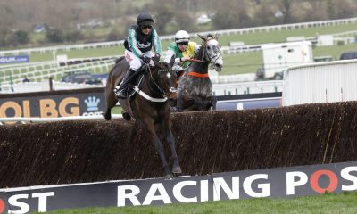 Cheltenham, UK. 14th March 2017. Altior ridden by Nico de Boinville wins the Racing Post Arkle Challenge Trophy Chase Grade 1 at Cheltenham-Cheltenham-Racecourse/Great Britain. Credit: dpa picture alliance/Alamy Live News