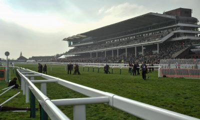 Cheltenham Racecourse Hill and Stand