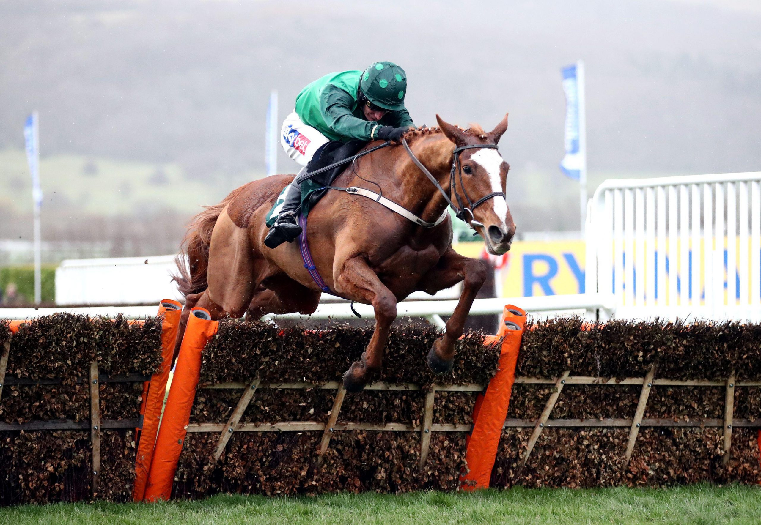 Concertista ridden by Daryl Jacob on his way to winning the the Daylesford Mares? Novices? Hurdle during day three of the Cheltenham Festival at Cheltenham Racecourse.