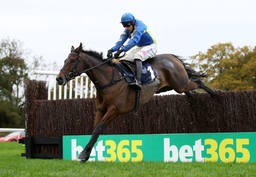 Shan Blue ridden by Harry Skelton clears the last before going on to win the bet365 Novices' Chase at Wetherby Racecourse.