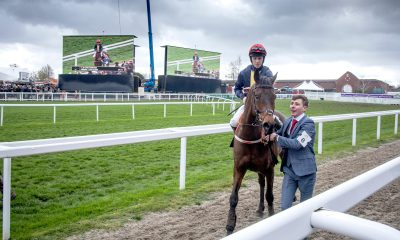 City Island and Mark Walsh after winning the Ballymore Novices' Hurdle at the 2019 Cheltenham Festival