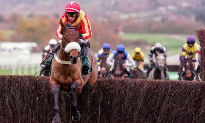 Coole Cody and Tom O'Brien jump the last to win the Paddy Power Gold Cup