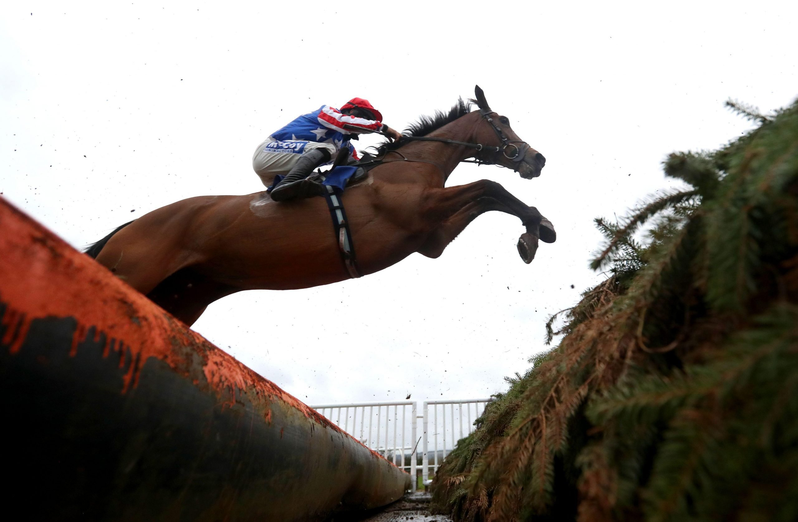 Danse Idol jumps the fence at Ludlow