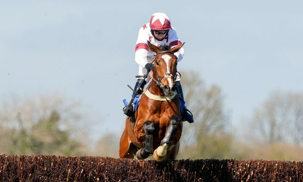2F60XJR Charlie Hammond riding Counteract clears the last to win The Join Racing TV Now Novices' Handicap Chase at Wincanton Racecourse. Picture date: Monday March 29, 2021.