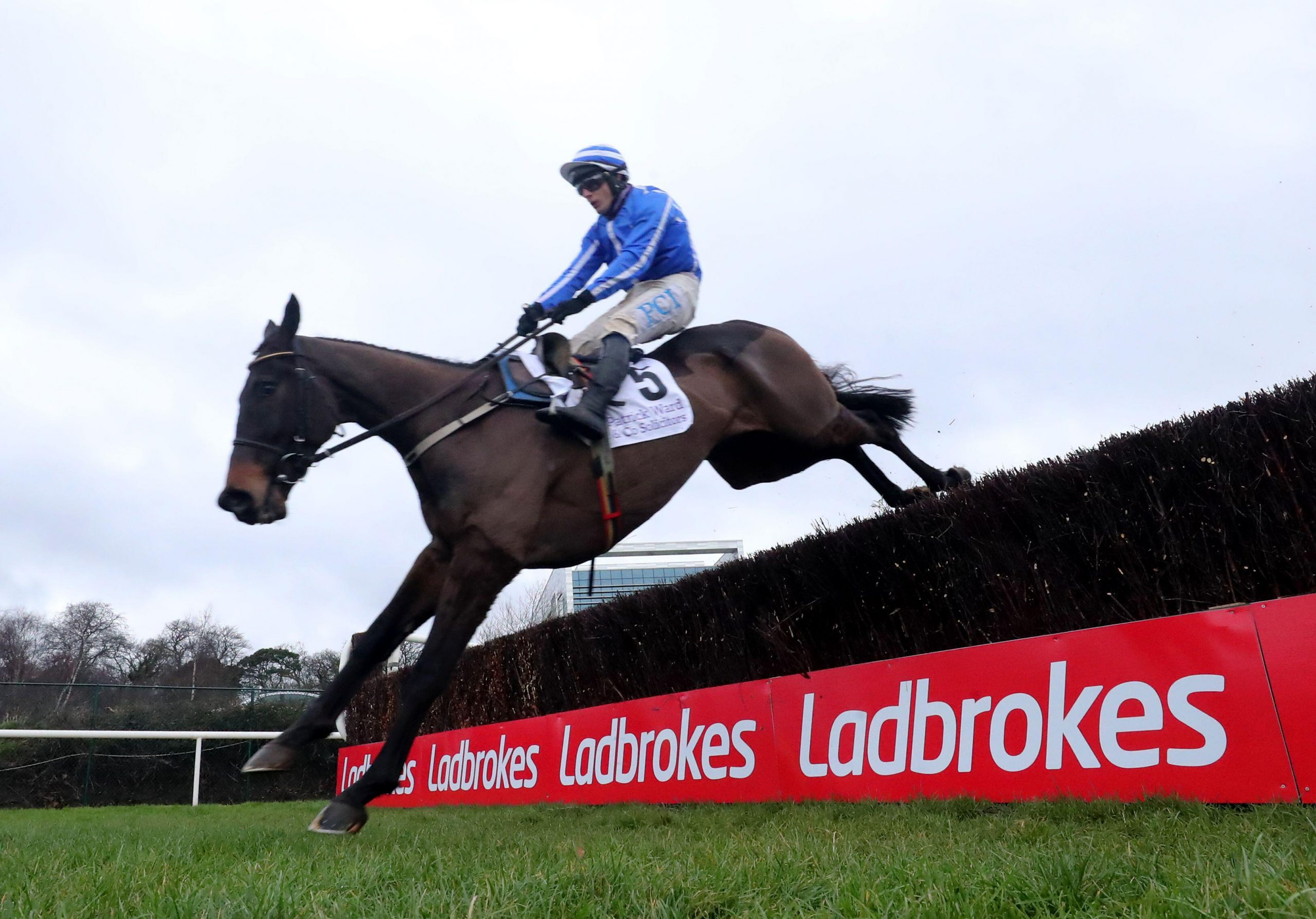 Energumene ridden by Paul Townend clears a fence on their way to winning the Patrick Ward & Co. Solicitors Irish Arkle Novice Chase during day one of the Dublin Racing Festival at Leopardstown Racecourse. Picture date: Saturday February 6, 2021.