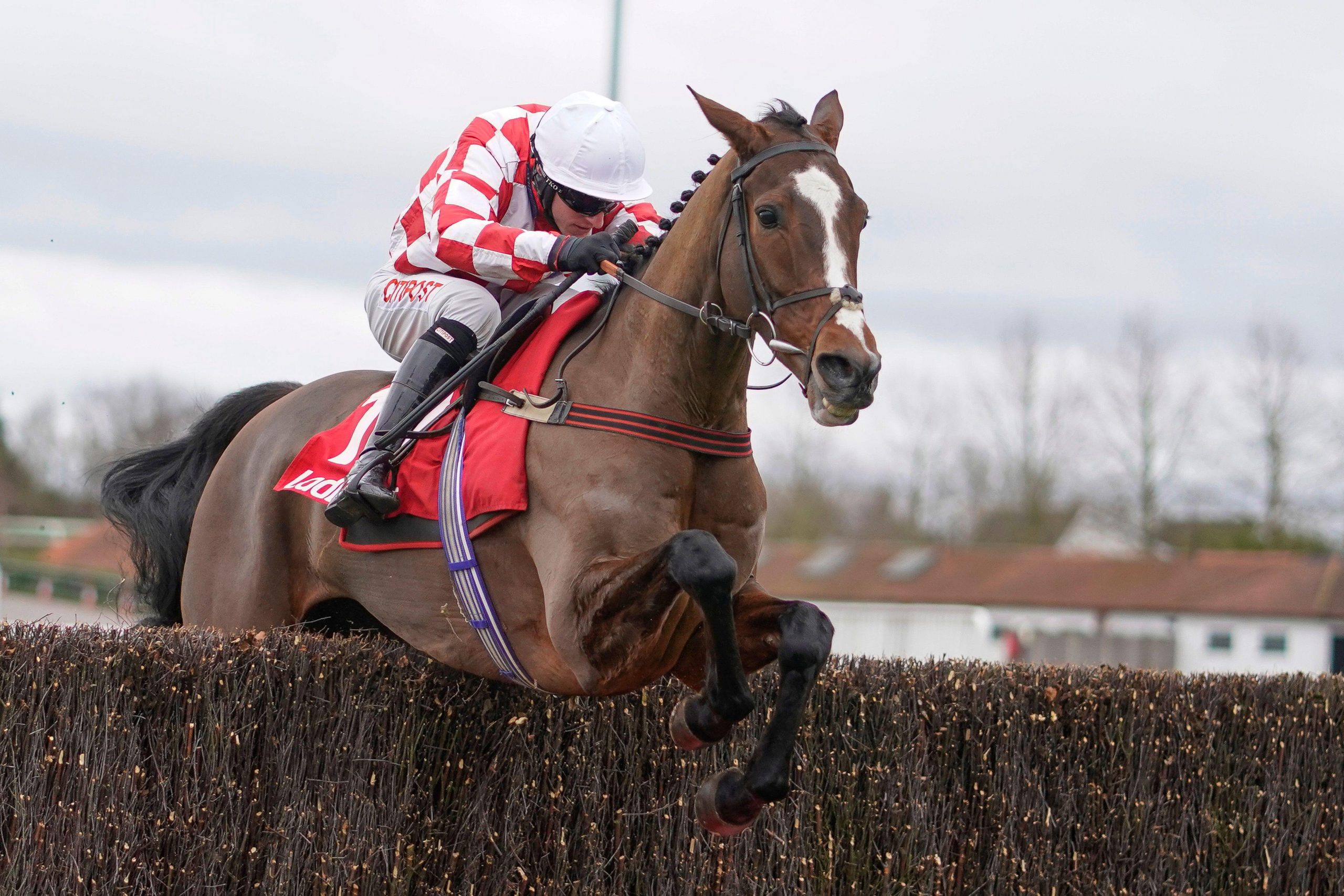 Wedge riding Killer Clown clear the last to win The Play Ladbrokes 5-A-Side On Football Novices' Limited Handicap Chase during King George VI Chase Day of the Ladbrokes Christmas Festival at Kempton Park Racecourse, Sunbury-on-Thames.