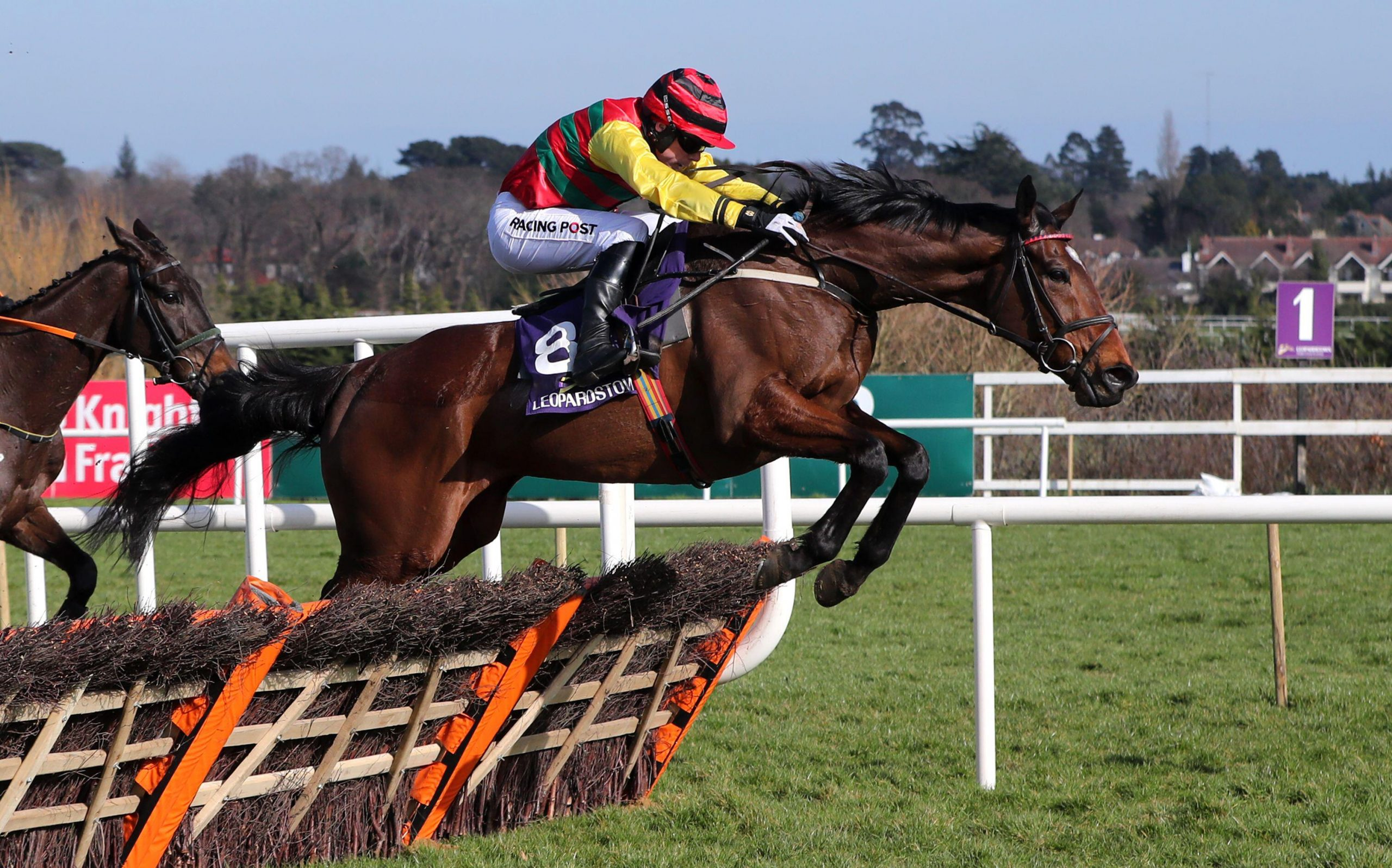 Max Flamingo ridden by Denis O'Regan goes on to win The Donohoe Marquees Maiden Hurdle at Leopardstown Racecourse in Dun Laoghaire-Rathdown, Ireland. Picture date: Sunday March 7, 2021.