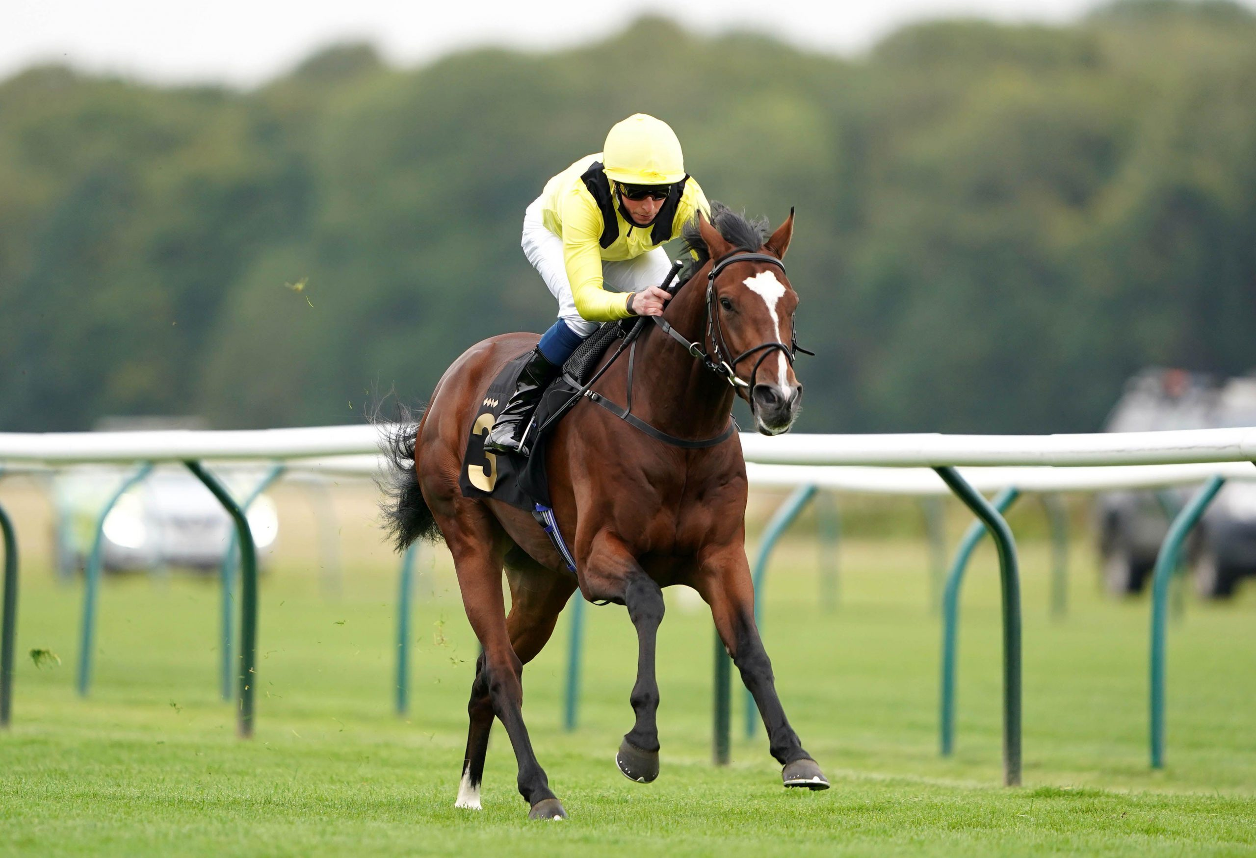 Aaddeey ridden by William Buick wins The Read Silvestre De Sousa Blog At starsportsbet.co.uk Novice Stakes at Nottingham Racecourse.