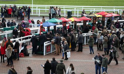 2D5Y68J Jockey Paddy Brennan on Aye Aye Charlie (left) walks past bookmakers and racegoers after the Ballymore Novices' Hurdle at Cheltenham Racecourse