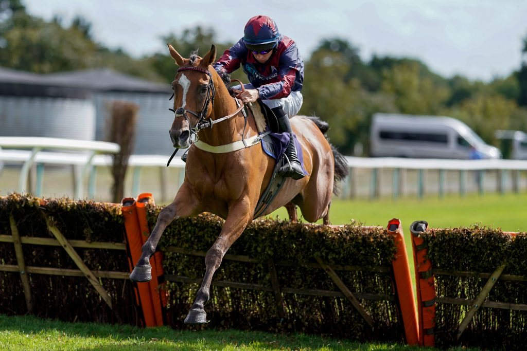 2CC3XXG Chapmanshype ridden by Gavin Sheehan clear the last to win The Sky Sports Racing Sky 415 Handicap Hurdle at Fontwell Park Racecourse.