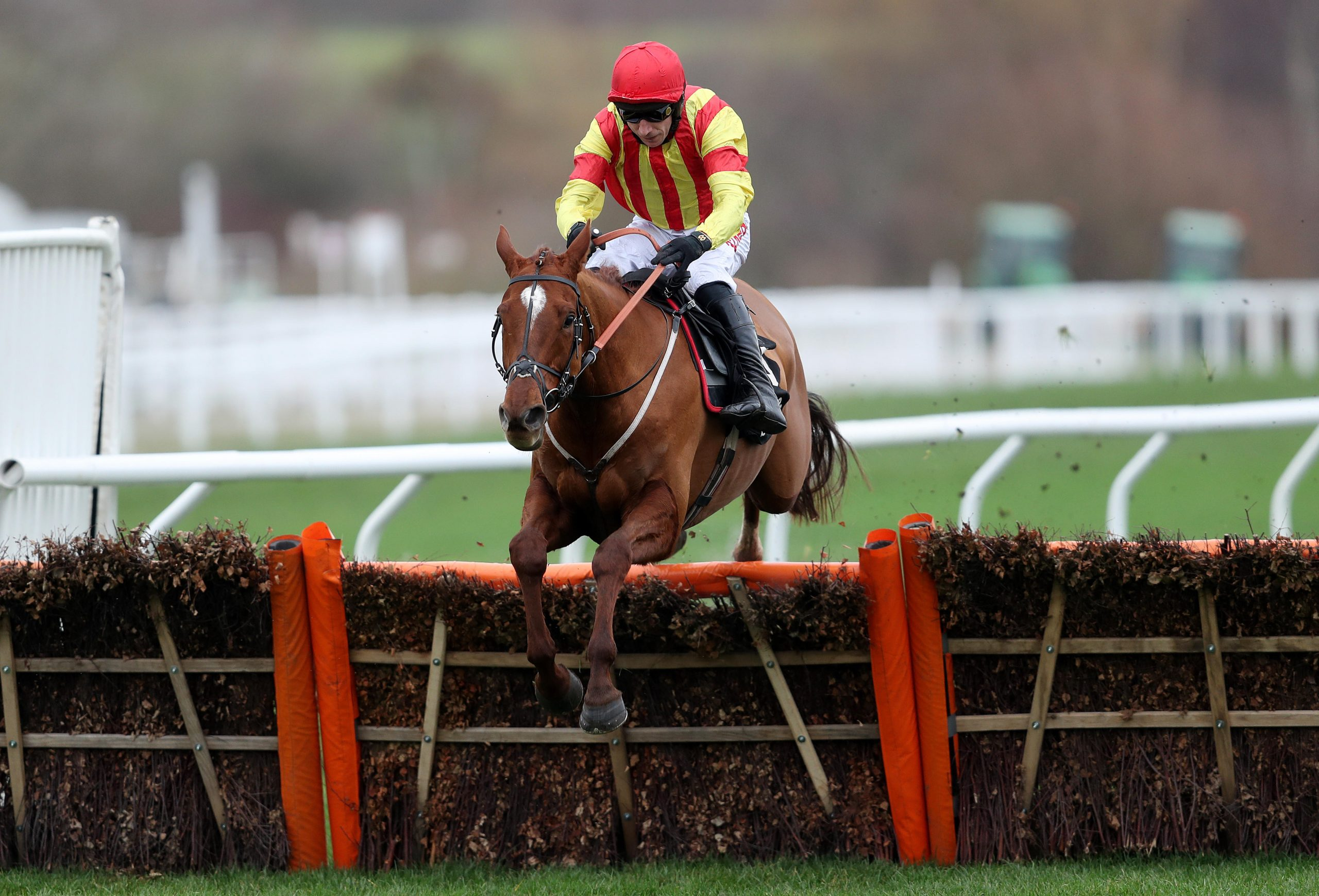 Jarveys Plate ridden by Paddy Brennan on their way to victory in the Ballymore Novices' Hurdle during the New Year Meeting at Cheltenham Racecourse.