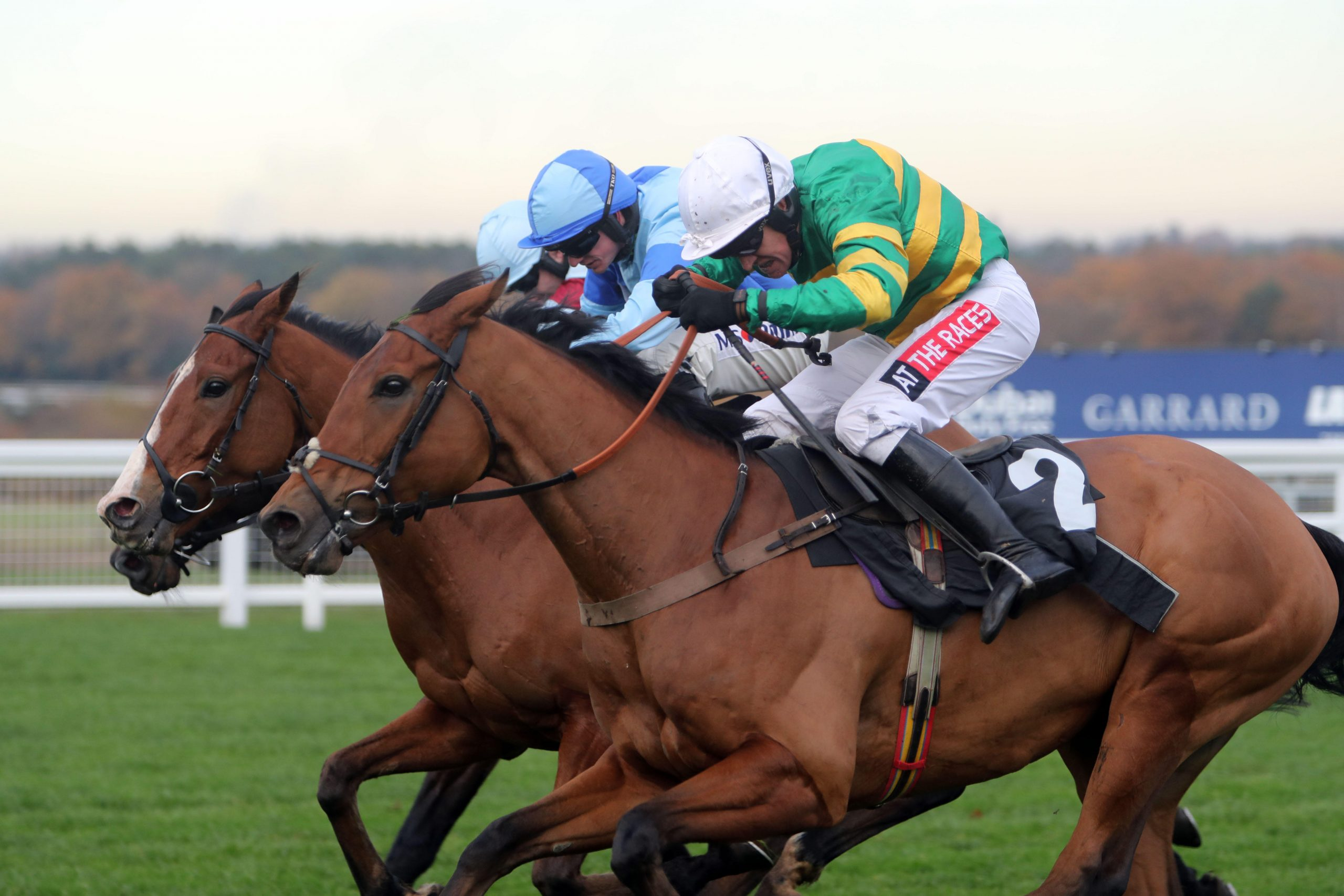 KJJ859 Mr One More ridden by Barry Geraghty go on to win the David Brownlow Charitable Foundation 'Introductory' Hurdle at Ascot Racourse.