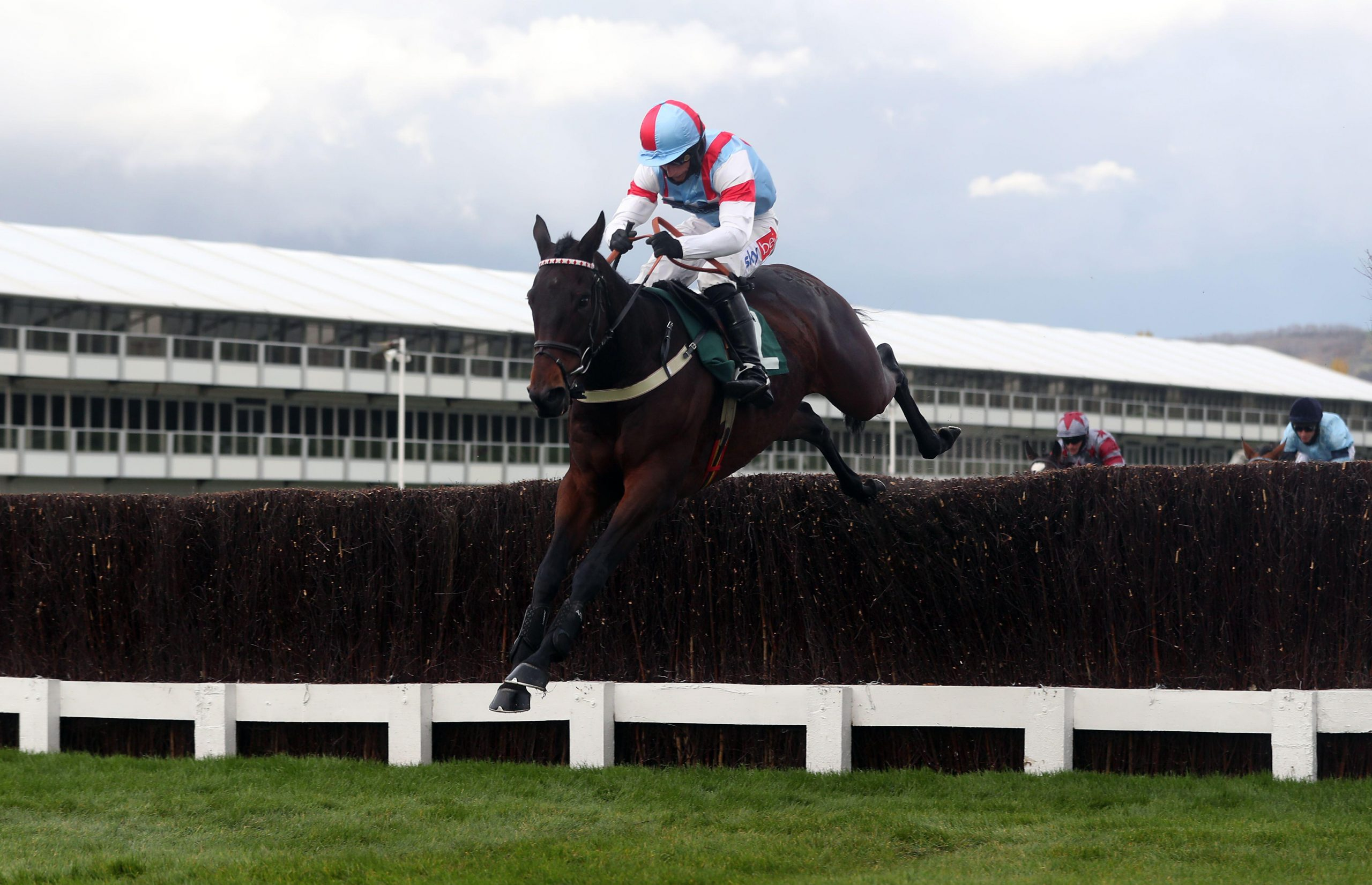 2D7JHF2 Rouge Vif ridden by jockey Daryl Jacob clears a fence on the way to winning the (Old) Bentley Flying Spur Handicap Chase at Cheltenham Racecourse.