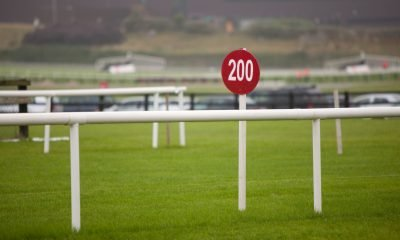 BNXFAJ Red Sign At The Galway Racecourse