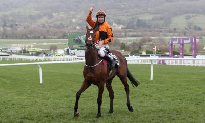 Put The Kettle On Gowran Park