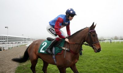 2AR1AEC Paisley Park ridden by Aidan Coleman before the galliardhomes.com Cleeve Hurdle during Festival Trials Day at Cheltenham Racecourse.