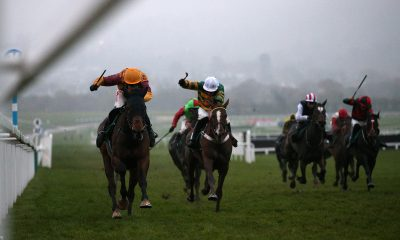 2A9RAPR Israel Champ ridden by Tom Scudamore (left) on their way to winning the High Sheriff Of Gloucestershire And Racing Remember Standard Open National Hunt Flat Race during the November Meeting at Cheltenham Racecourse, Cheltenham.