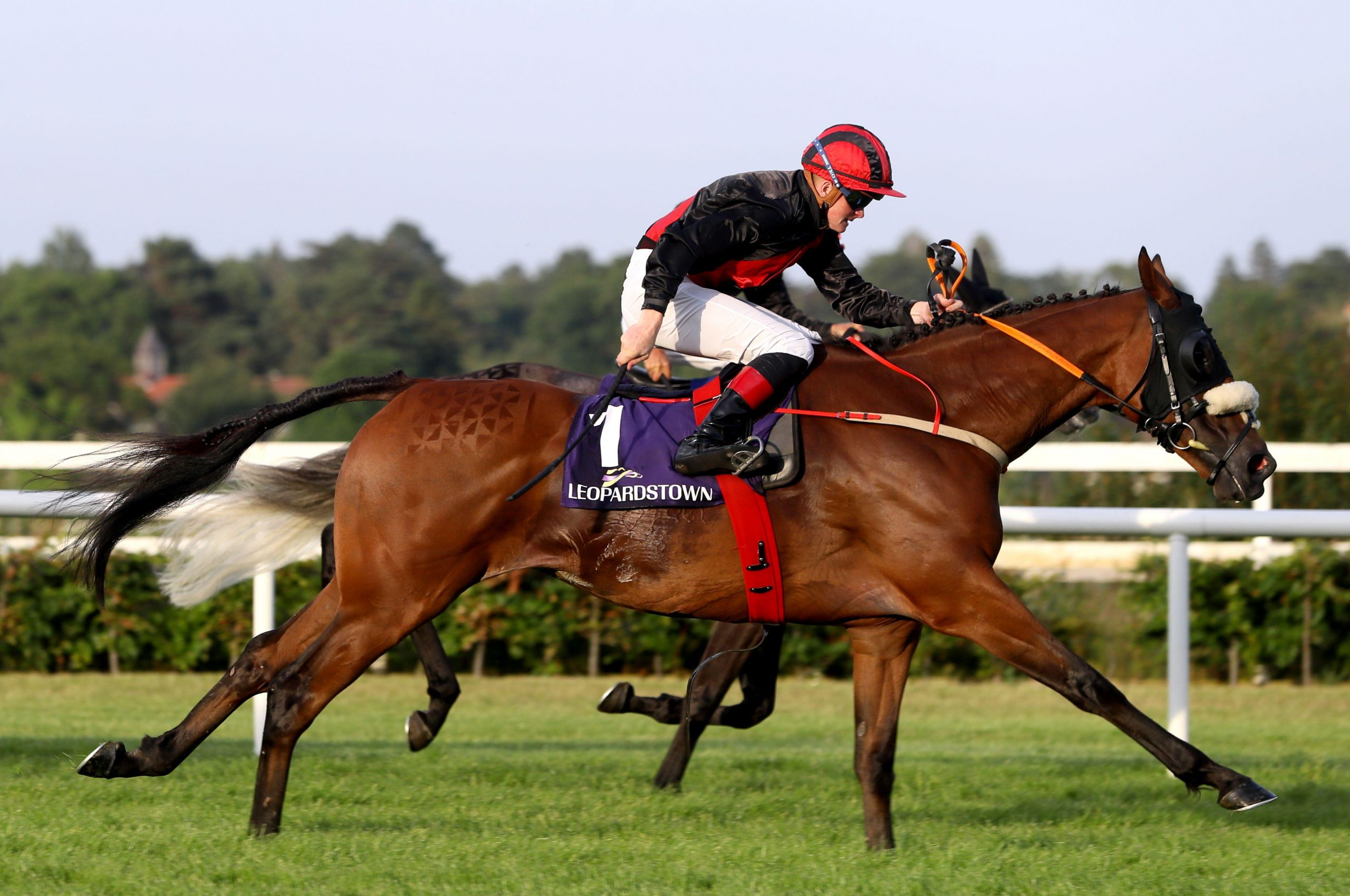 2G8RYA3 Peregrine Run ridden by Sam Ewing on their way to winning the Horseraces S.A. Of Greece Handicap at Leopardstown Racecourse in Dublin, Ireland. Picture date: Thursday July 22, 2021.